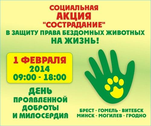 Акция Сострадание в Бресте 1 февраля