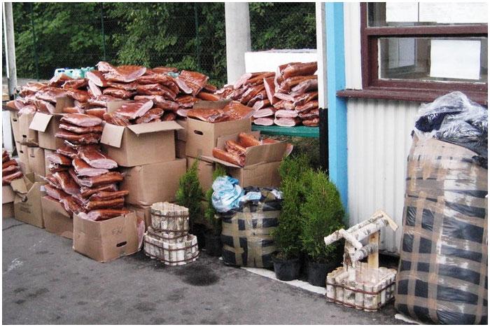 1300 килограмм свинины везли через границу из Польши
