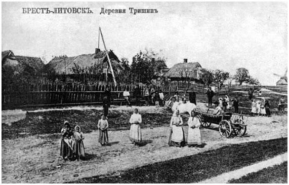 Деревня Тришин. Брест-Литовск
