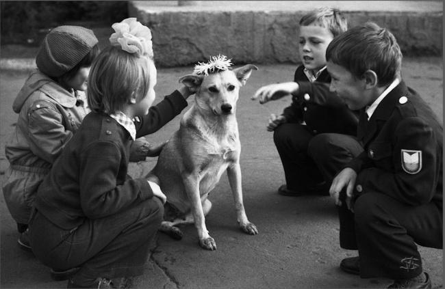 «Венок для собаки». Дети пришли в школу и увидели собаку, которую решили одарить цветами.