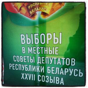 Выборы в местные советы депутатов в Беларуси 2014