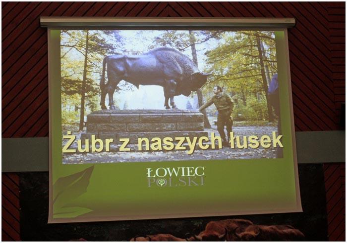 Памятник зубру в Польше. В Беловежской пуще