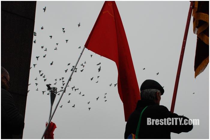 7 ноября в Бресте. Площадь Ленина 2015. Фото BrestCITY.com