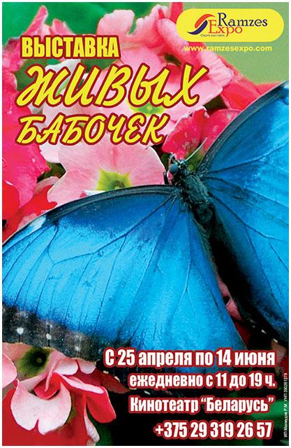 Выставка живых бабочек в кинотеатре Беларусь