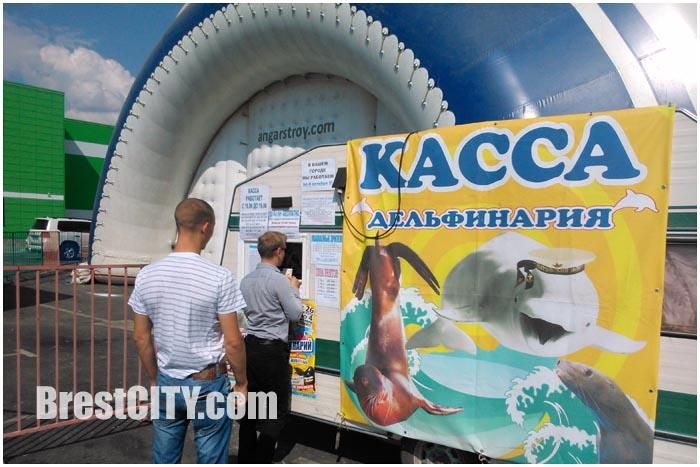 Дельфинарий в Бресте возле АЛМИ. Фото BrestCITY.com