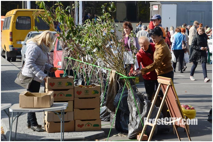 Осенняя ярмарка на парковке за ТЦ Дидас Персия. Фото BrestCITY.com