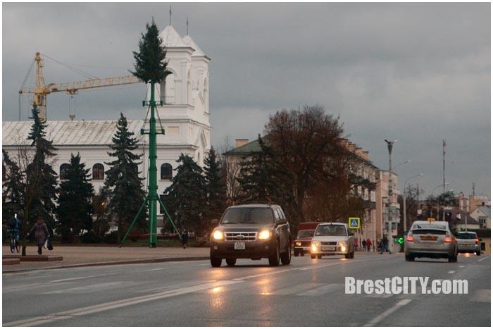 Установка главной городской елки в Бресте. Фото BrestCITY.com