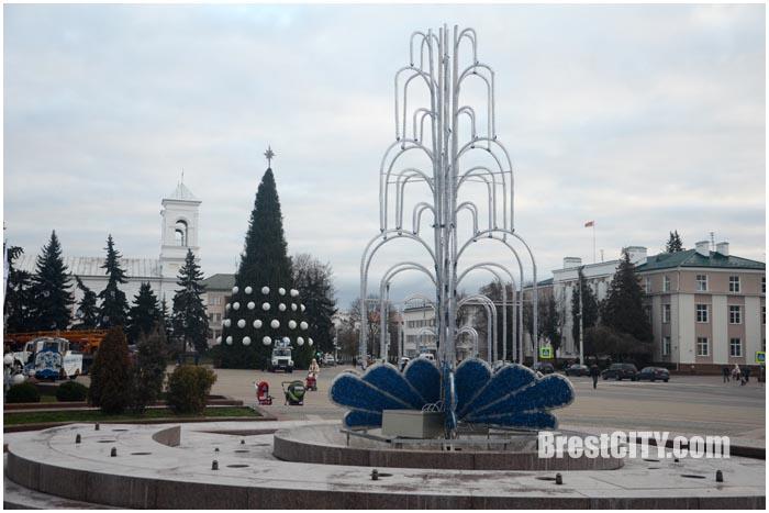 Новогодняя елка на площади Ленина 2015. Фото BrestCITY.com