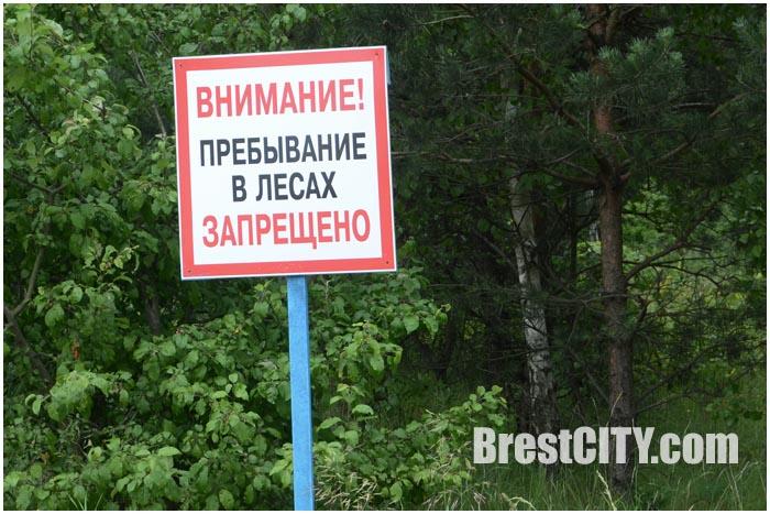 Запрет на посещение лесов. Табличка