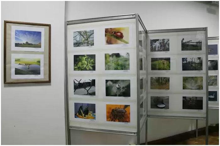 Фотовыставка Мир через объектив