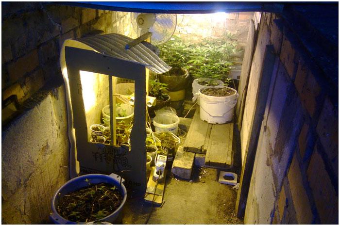 Нарколаборатория в гараже у брестчанина