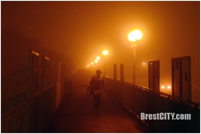 Ночной Брест в тумане. Фото BrestCITY.com