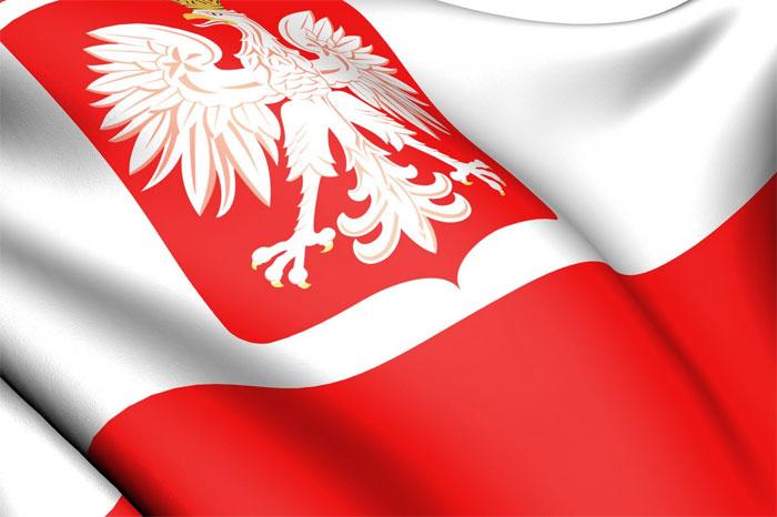 Образовательный центр Польши
