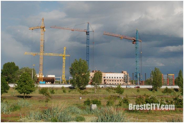 Дворец водных видов спорта в Бресте. Фото BrestCITY.com