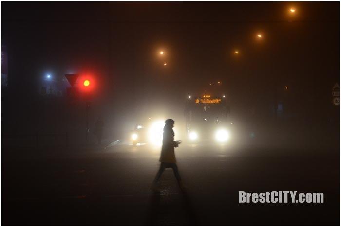 Туман на дорогах Бреста. Фото BrestCITY.com