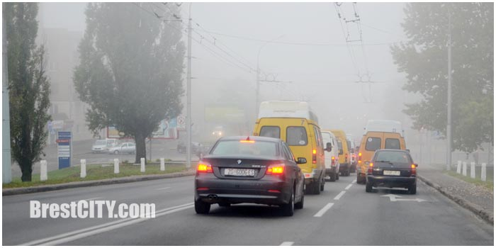 Туманное утро в Бресте. Дорога. Фото BrestCITY.com