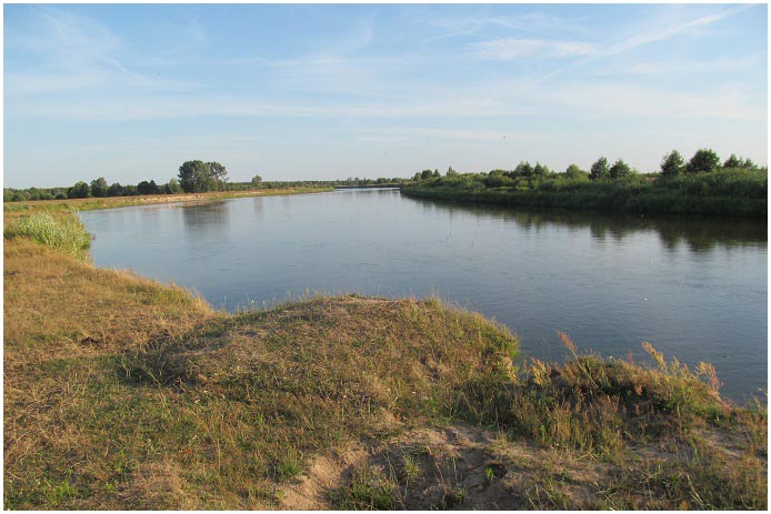 На реке Припять утонул ребенок