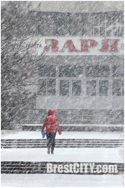 3 марта 2015 года в Бресте выпал снег. Фото