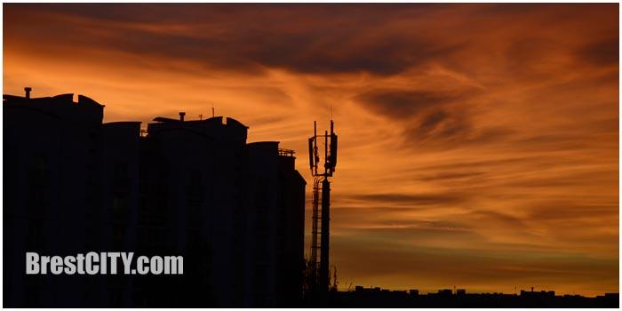 Вышка сотовой связи. Фото BrestCITY.com
