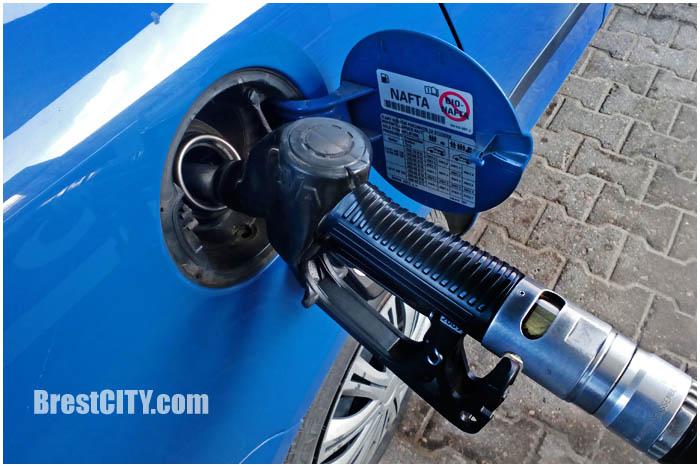 Заправка автомобиля. Топливный бак, пистолет. Фото BrestCITY.com
