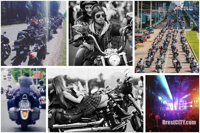 Байк-фестиваль 2016 в Инстаграм. Лучшие фотографии