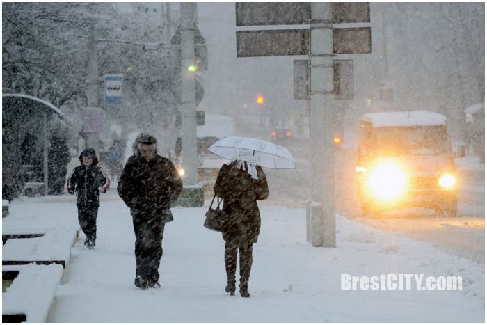 Циклон Даниэлла в Бресте. 12 января 2016. Фото BrestCITY.com