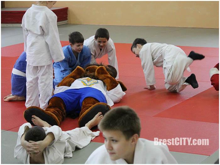 Соревнования по дзюдо в Бресте