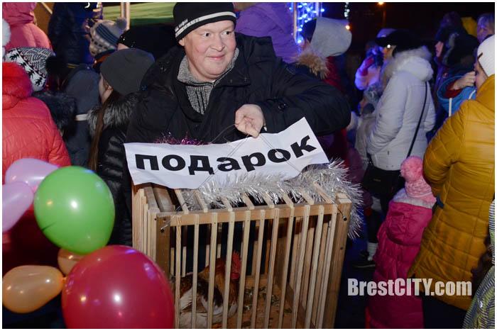 Открытие елки Московского района Бреста 16 декабря 2016. Фото BrestCITY.com