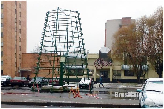 В Бресте начали устанавливать городские елки 2016. Фото BrestCITY.com
