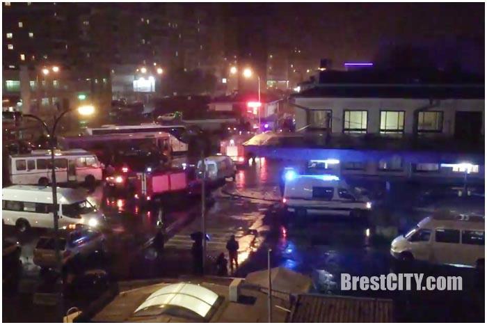 Телефонный хулиган заминировал автовокзал в Бресте