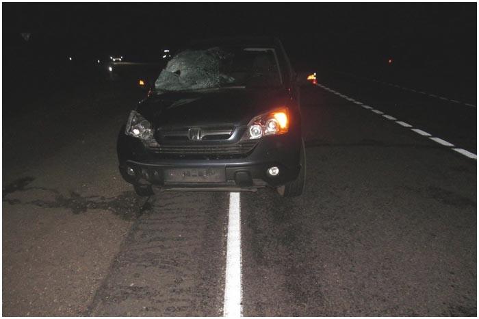 Водитель хонды сбил пешехода в Ивацевичском районе