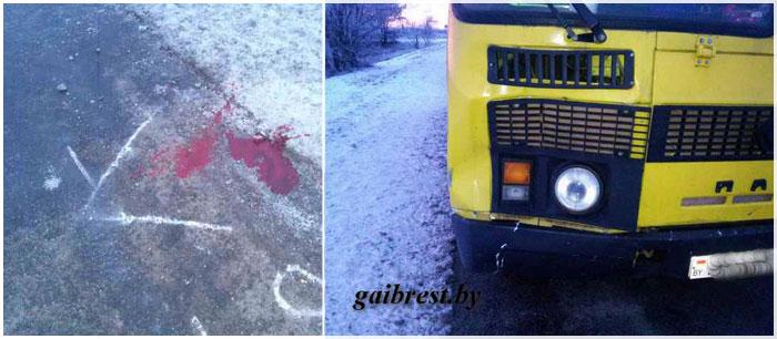 Рейсовый автобус сбил женщину в Кобринском районе 16 декабря 2016