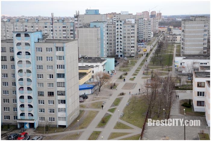 Аллея Дмитрия Гвишиани в Бресте