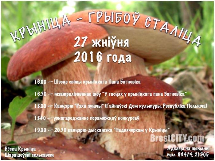 Криница - грибов столица