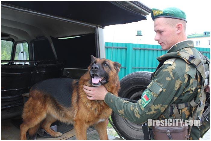 Марокканца и россиянина задержали брестские пограничники