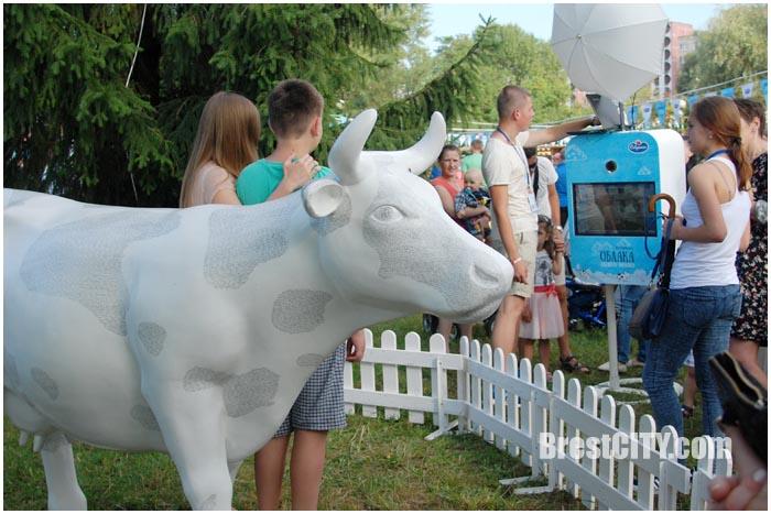 Облакамолока в Бресте. Молочный фестиваль. Фото BrestCITY.com
