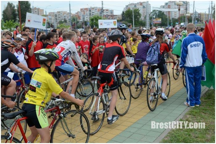 Олимпийски день в Бресте 23 июня 2016. Фото BrestCITY.com