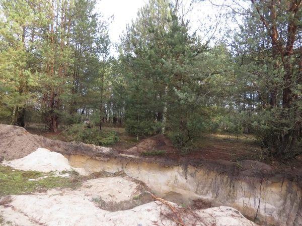 Незаконная добыча песка возле Бреста