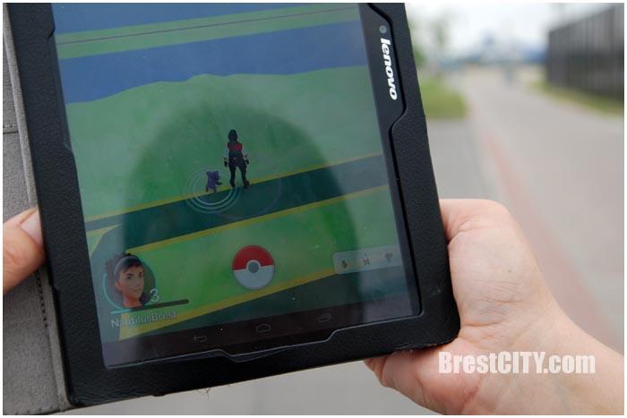 Как мы ловили покемонов в Бресте. BrestCITY.com