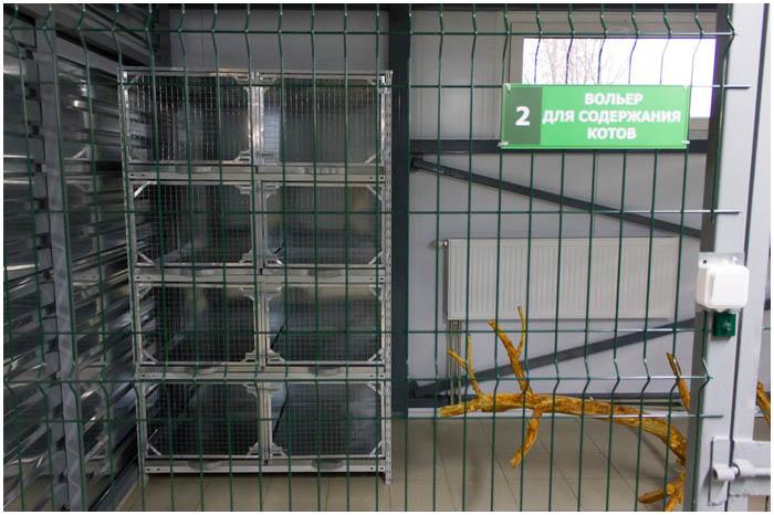 Приют для бездомных собак и котов в Бресте
