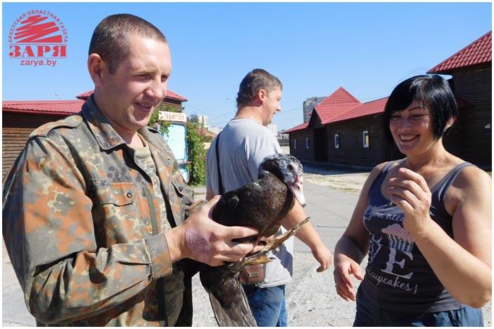Птичий рынок на Ковалевке. Старый город