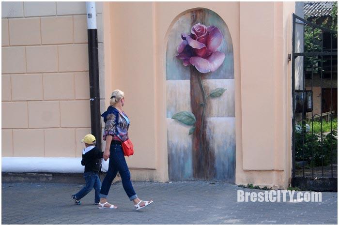 Новая роза в арке на ул.Комсомольской в Бресте. Фото BrestCITY.com