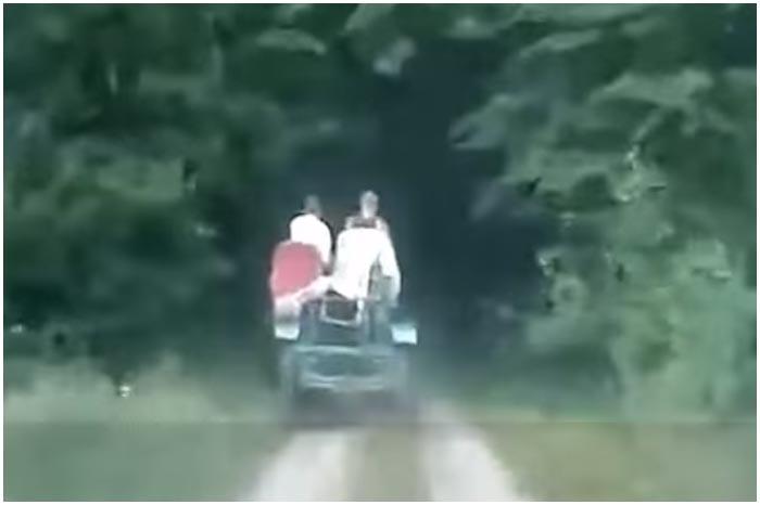 Лесная погоня за самодельным трактором в Каменецком районе