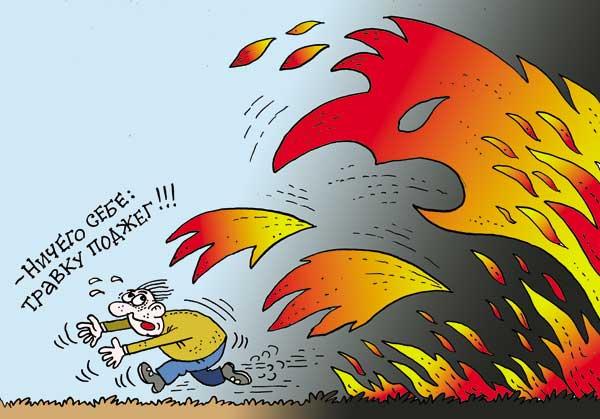 Выжигание сухой растительности