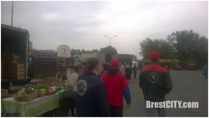 Волонтеры помогают с доставкой сельхозпродукции с ярмарок