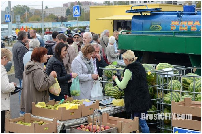 Осенняя ярмарка в Бресте 2016. Фото BrestCITY.com