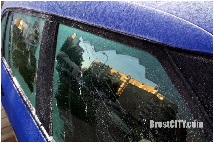 Первые заморозки в Бресте. Фото BrestCITY.com