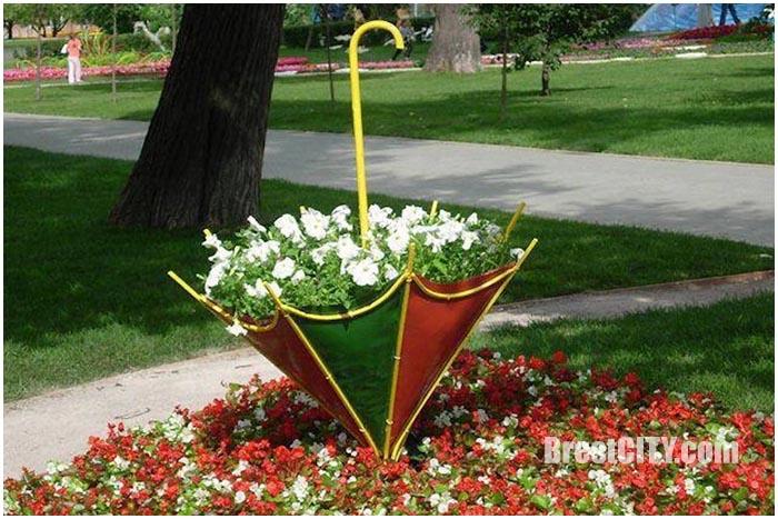 Перевернутые зонтики-клумбы в Бресте. Арт-объект. Фото BrestCITY.com