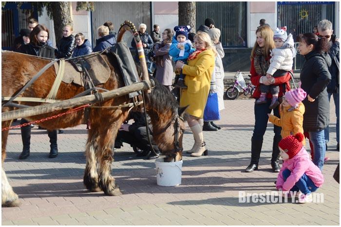 Температурный рекорд дня в Бресте. Фото BrestCITY.com