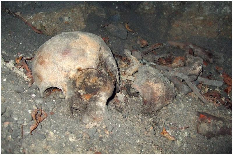 На Кобринском укреплении обнаружен человеческий череп